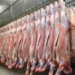 Katima Mulilo abattoir to commence with test slaughtering