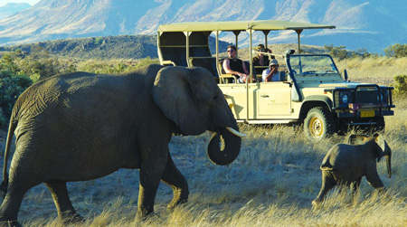 African Safari industry continues to suffer as COVID-19 restrictions take their toll on tourism