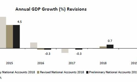 Real GDP declined by 1.1% in 2019, somewhat smaller than anticipated – expert