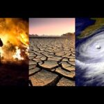 Is COVID-19 our dress-rehearsal for the impending climate disaster?