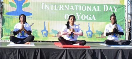 Practise yoga from home on International Yoga Day