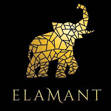 Business activities of Elamant are unlawful – Central Bank