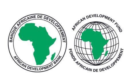 Africa still a prime investment destination, participants affirm at AfDB webinar for Asian audiences