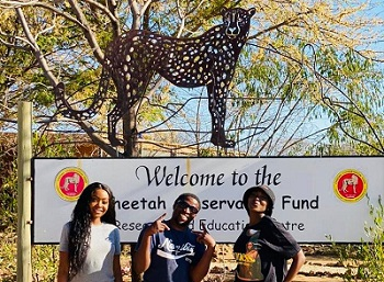 Local artists join global movement to save the wild cheetah