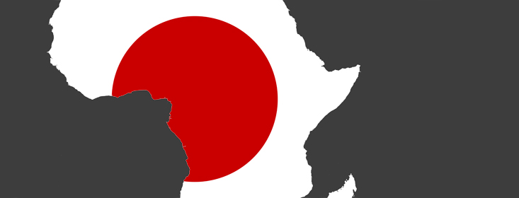 African Development Bank urges Japanese investors to seek continental investment partners