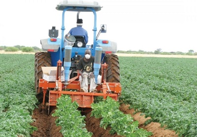 Food security, agriculture, the AfCFTA, crucial for Africa's post-COVID-19 recovery – African Economic Conference