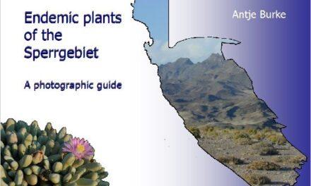 Free e-book field guide unlocks Sperrgebiet's rich plant diversity