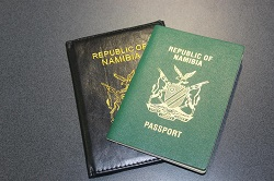 Old passport application fee still valid until early 2021 – Home Affairs