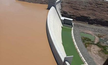 Namwater Dam Bulletin on Monday 11 January 2021 – Neckartal approaching the halfway mark