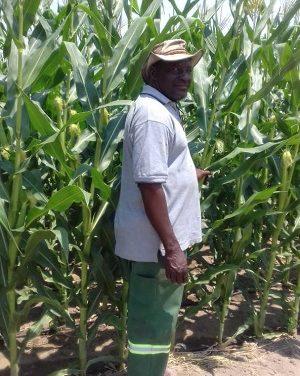 From a street vendor to an award winning farmer