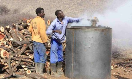 Pilot charcoal production project in communal areas commences