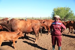 Passionate young resettled farmer ploughs her way to success