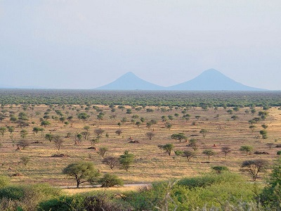Namibia Nature Foundation clarifies factual context of local bush biomass