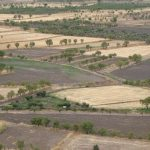 The risks that threaten dryland crop production
