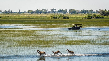 Youth climate activists urge Geingob to save the Okavango Delta