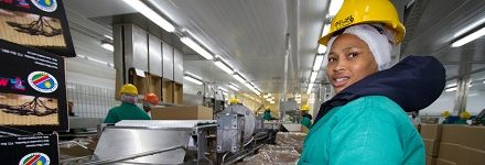 Meatco to engage major distributors, retailers of meat products in Ghana