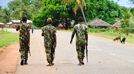 SADC seized with security situation in northern Mozambique