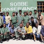 Elephants enjoy right of way in Sobbe Conservancy thanks to financial support from Amarula