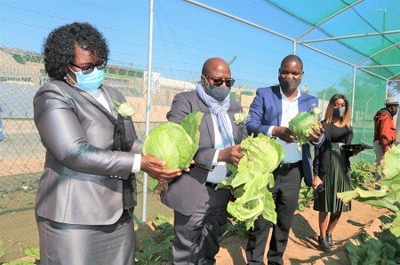 Agronomic Board hands over 14 school gardens across the country