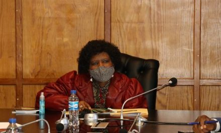 National Assembly Deputy Speaker clarifies chaos at Pan African Parliament