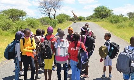 Khomas environmental education soldiers on with support from Go Green Fund