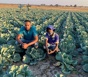 Resilient medium-scale farmer aspires to feed the nation