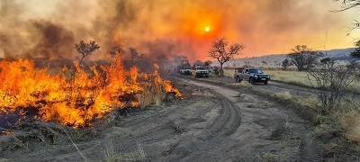 Veld fires blaze through 2.5 million hectares of grazing land