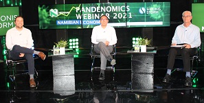Experts discuss the effects of the Covid-19 pandemic on the economy